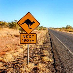kenguru avstralija cesta fbimage 300x300 - 11. Nočni pohod na Slivnico