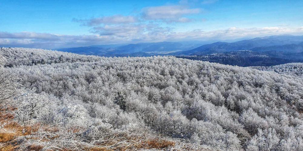 (Ne)znane tekaške in pohodniške poti Javornikov (I.del)